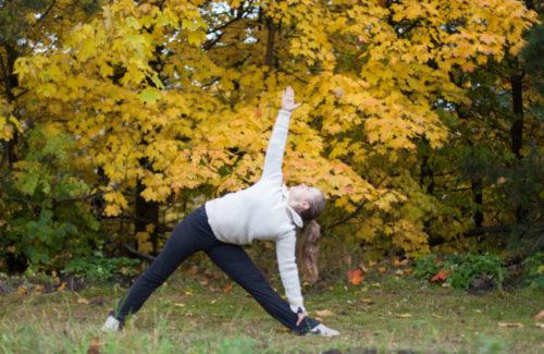 Nybegynnerkurs i Iyengar yoga